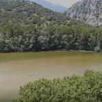 Θράκη-Στενά Νέστου